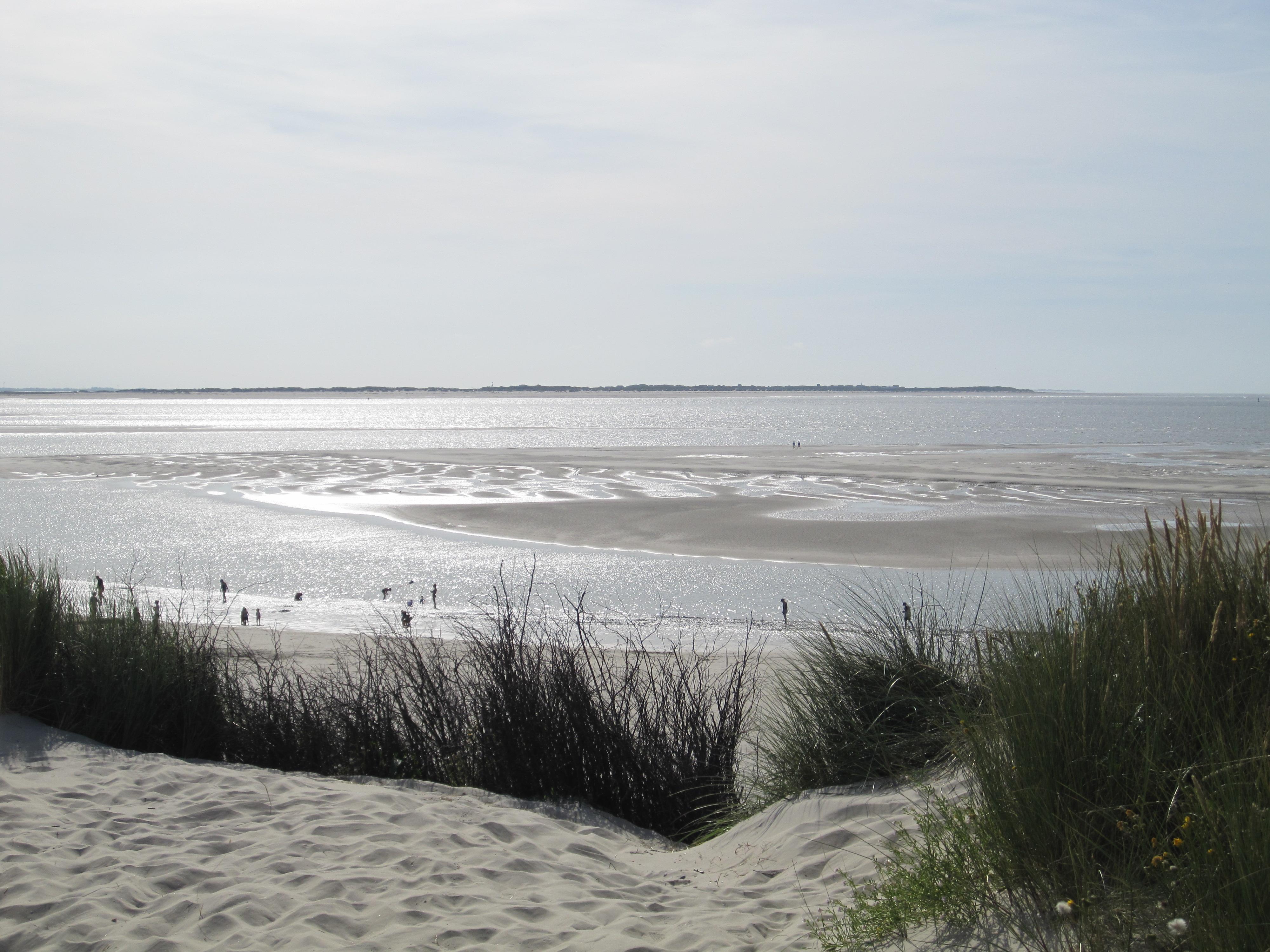 Langeoog Natur