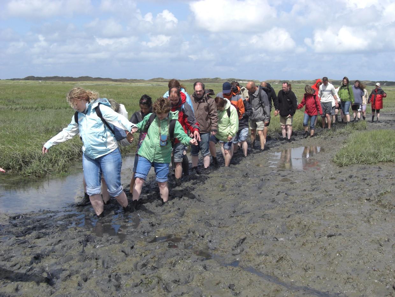 Langeoog Wattwanderung